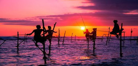 重庆到斯里兰卡七日游(经典之旅)