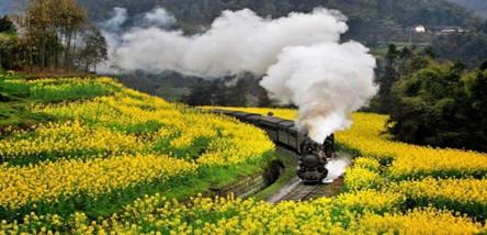 重庆到嘉阳蒸汽小火车、罗城古镇二日游