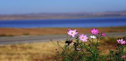 重庆到东北长春、长白山、镜泊湖、哈尔滨、呼