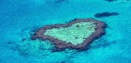 重庆到澳大利亚生态(澳墨)双岛10日游