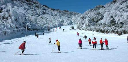 金佛山滑雪一日游(跟团)