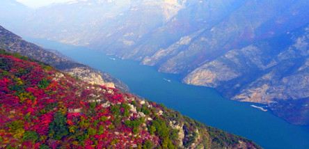 [三峡红叶旅游]巫山红叶、小三峡红叶、龙缸三日